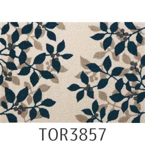 Tori-3857-3864